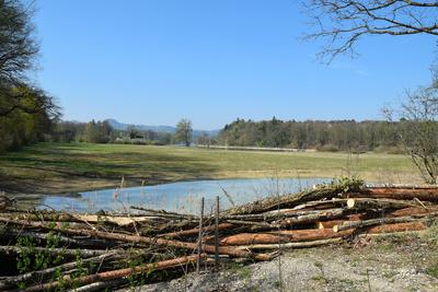 Stop: Naturschutzgebiet