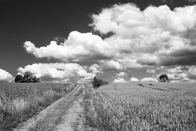 Sommerwolken SW