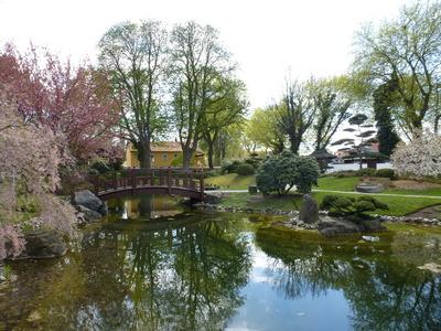 Im japanischen Garten Bad Langensalza.