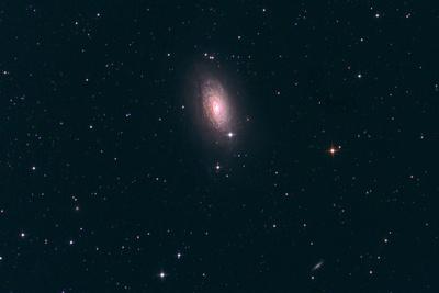 M63 Sunflower Galaxie