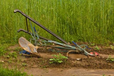 Traditioneller Ackerbau