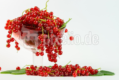 Süß-sauer (2)