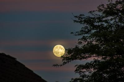Guter Mond....