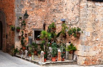Mallorquinischer Vorgarten