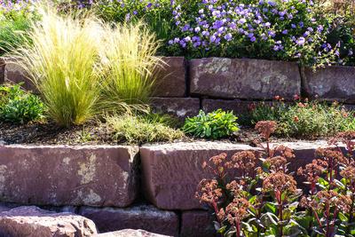 Blühende Steinmauern