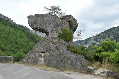 Markante Felsen in der Tarn-Schlucht