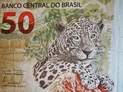 brasilianischer Fünfzig Real-Geldschein mit Jaguar