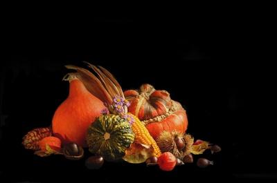 Herbstzeit ist Kürbiszeit...3...