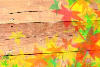 Herbstblätter auf Holzplatte