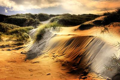 denmark dune