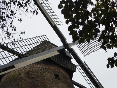 Windmühle von Zons