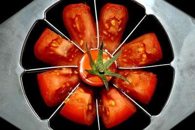 Tomaten 104
