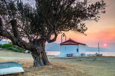 Griechische Kirche und Olivenbaum bei Sonnenuntergang
