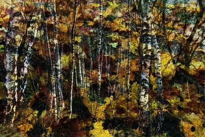 Herbststimmung
