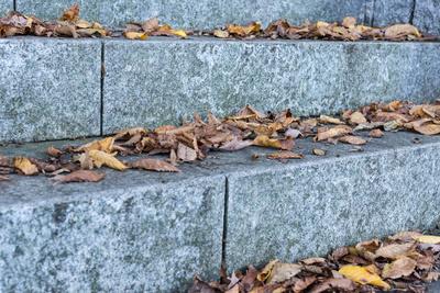 Herbstlaub auf Stufen