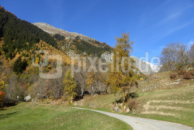 Herbst im Oberwallis