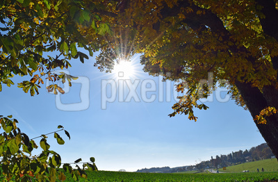 Herbst in Oberbayern