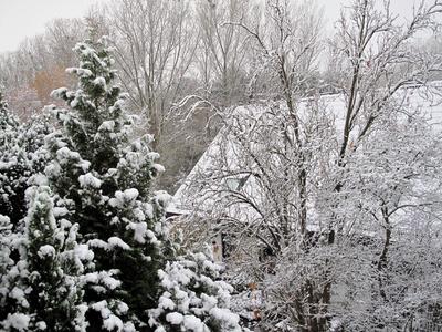 Der erste Schnee im November 1