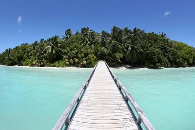 Weg auf die Insel
