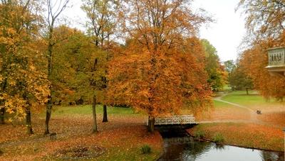 Goldener Herbst im Evenburgpark