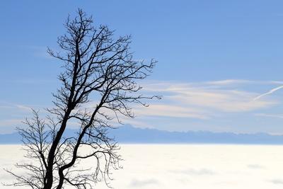 über den Wolken 11