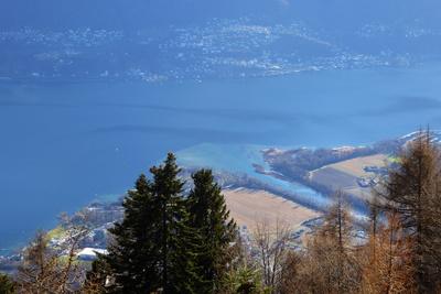 Maggia-Delta (Lago Maggiore)