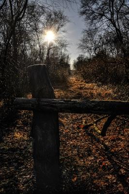 Brutschutzgebiet - Kein Durchgang