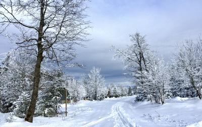 Schwarzwald-Winter mit Loipe