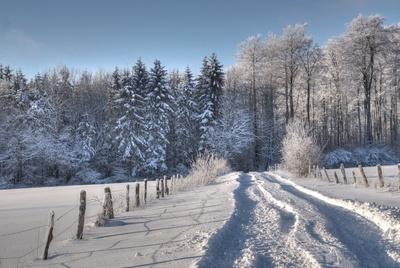 Spuren im Schnee I
