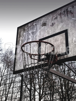 Basketball Korb alt