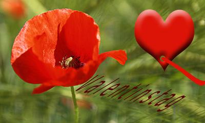 Kostenloses Foto Schönen Valentinstag Pixeliode