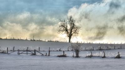 Winter im Eggegebirge I