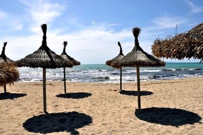 Palmschirme am Strand