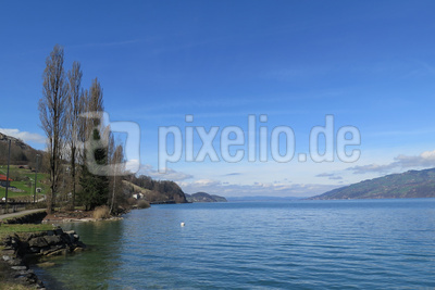 Thunersee linkes Ufer