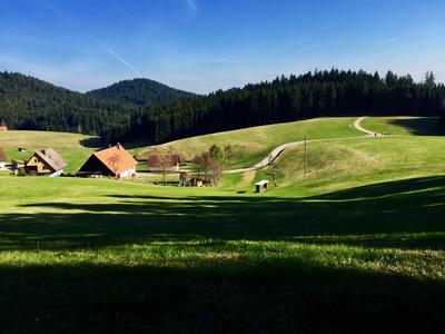Schwarzwald im Vorfrühling