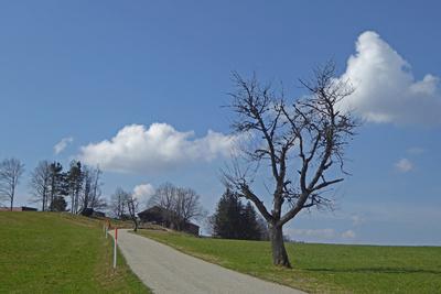 Frühlingswolken über dem Jura
