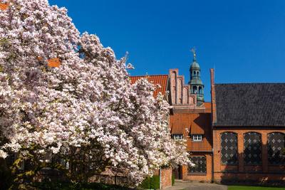 Im Rathausgarten