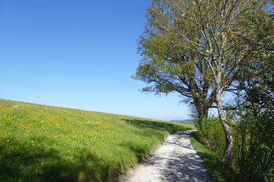 Alpenpanoramaweg, Etappe 19