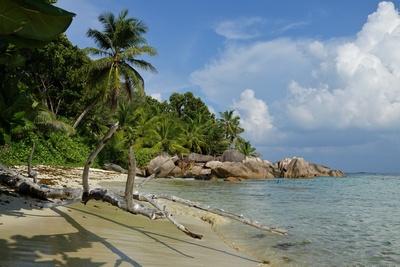Traumstrand der Seychellen