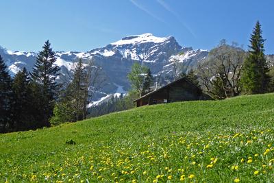 Dreispitzgebirge