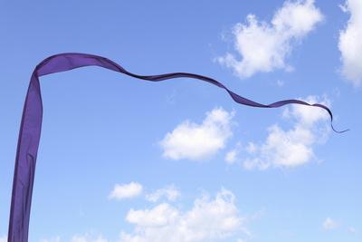 vom Winde verweht 1