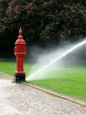 Wassersprengen mit Hydrant