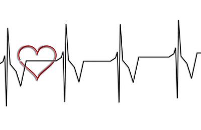 Herzschlag, Herzschlagfrequenz