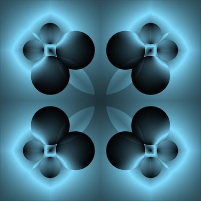 vier schwarze Pfoten