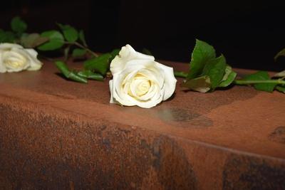 Rose und Trauer