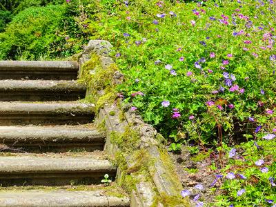 Stufen aus Mainsandstein