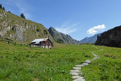 Auf dem Aletsch-Panoramaweg