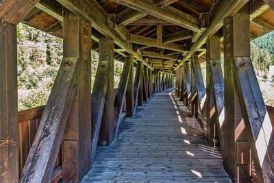 Baukunst aus Holz