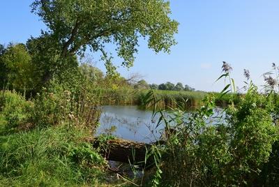 Usedom - Idylle am Achterwasser
