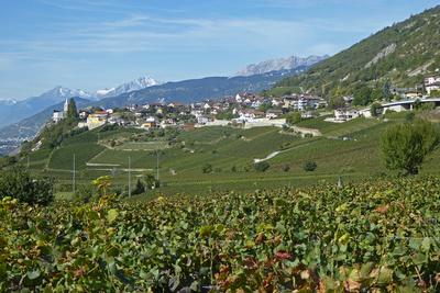 Weinbaudorf Varen (Wallis)